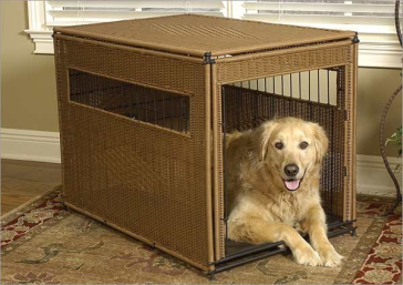 Best pretty crates for dogs