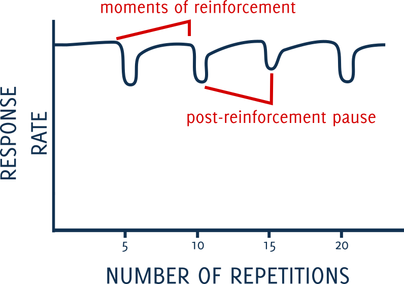 fixed ratio schedules of reinforecement