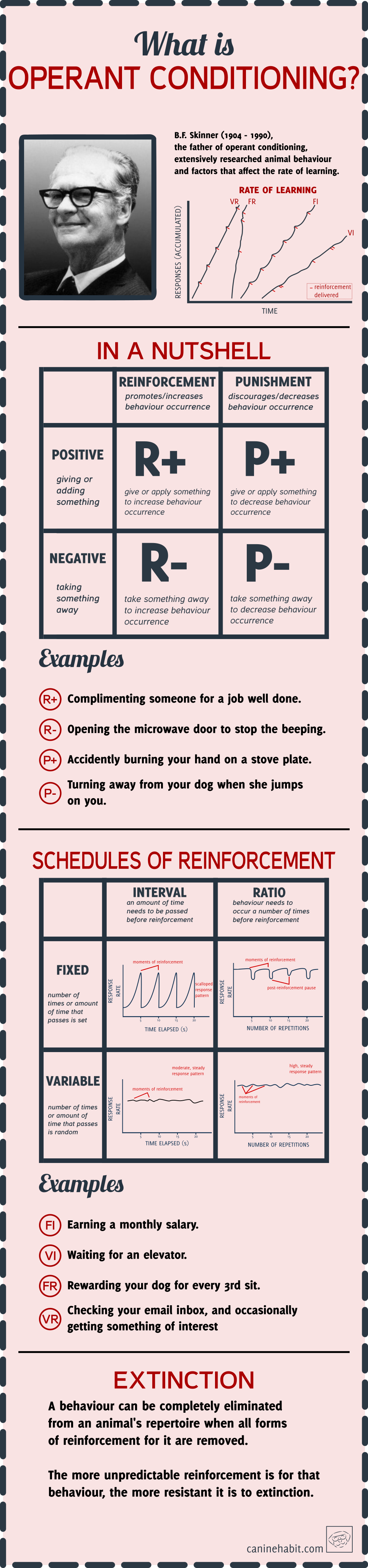 OPERANT CONDITIONING INFOGRAPHIC