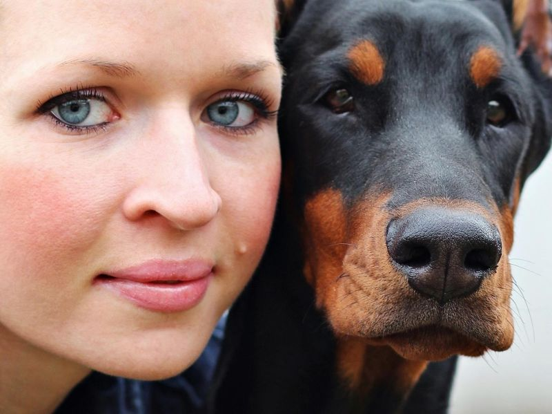 On Talking Terms With Dogs: Calming Signals – Review