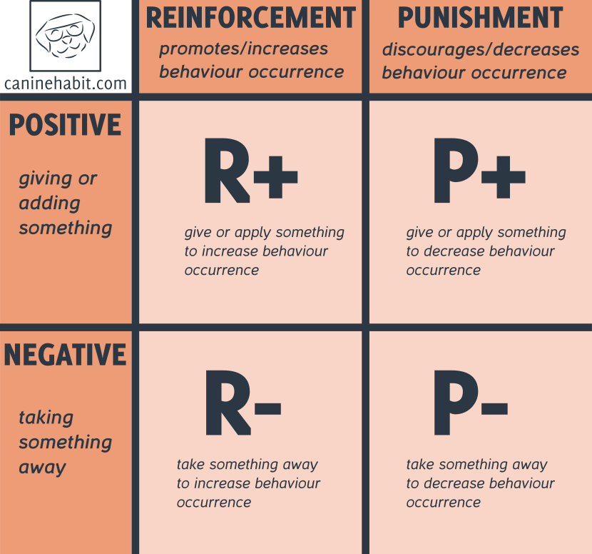what is operant conditioning
